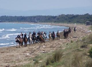 CM Equitazione